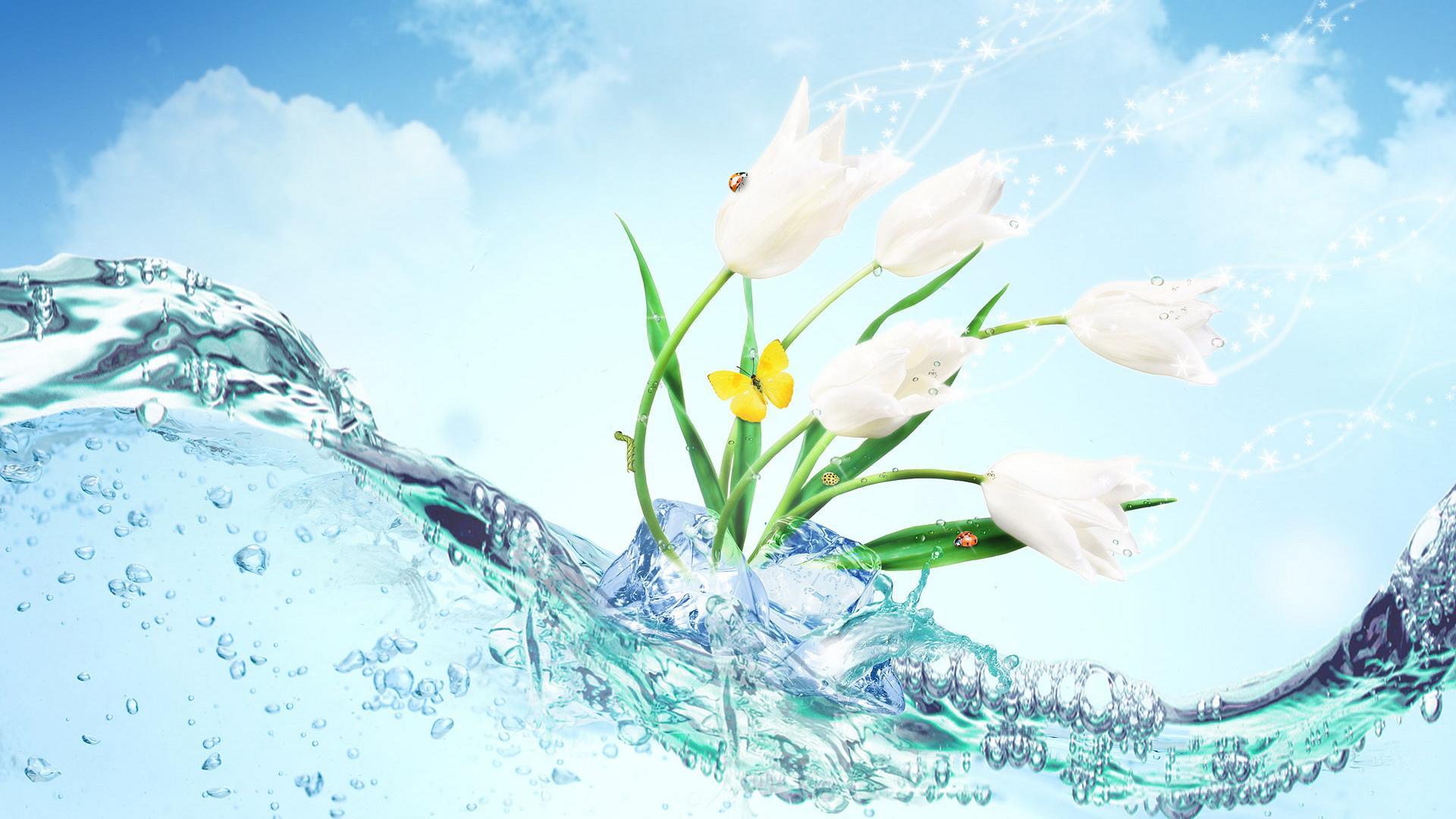 HD-Wallpaper-Flower-Download-free-02