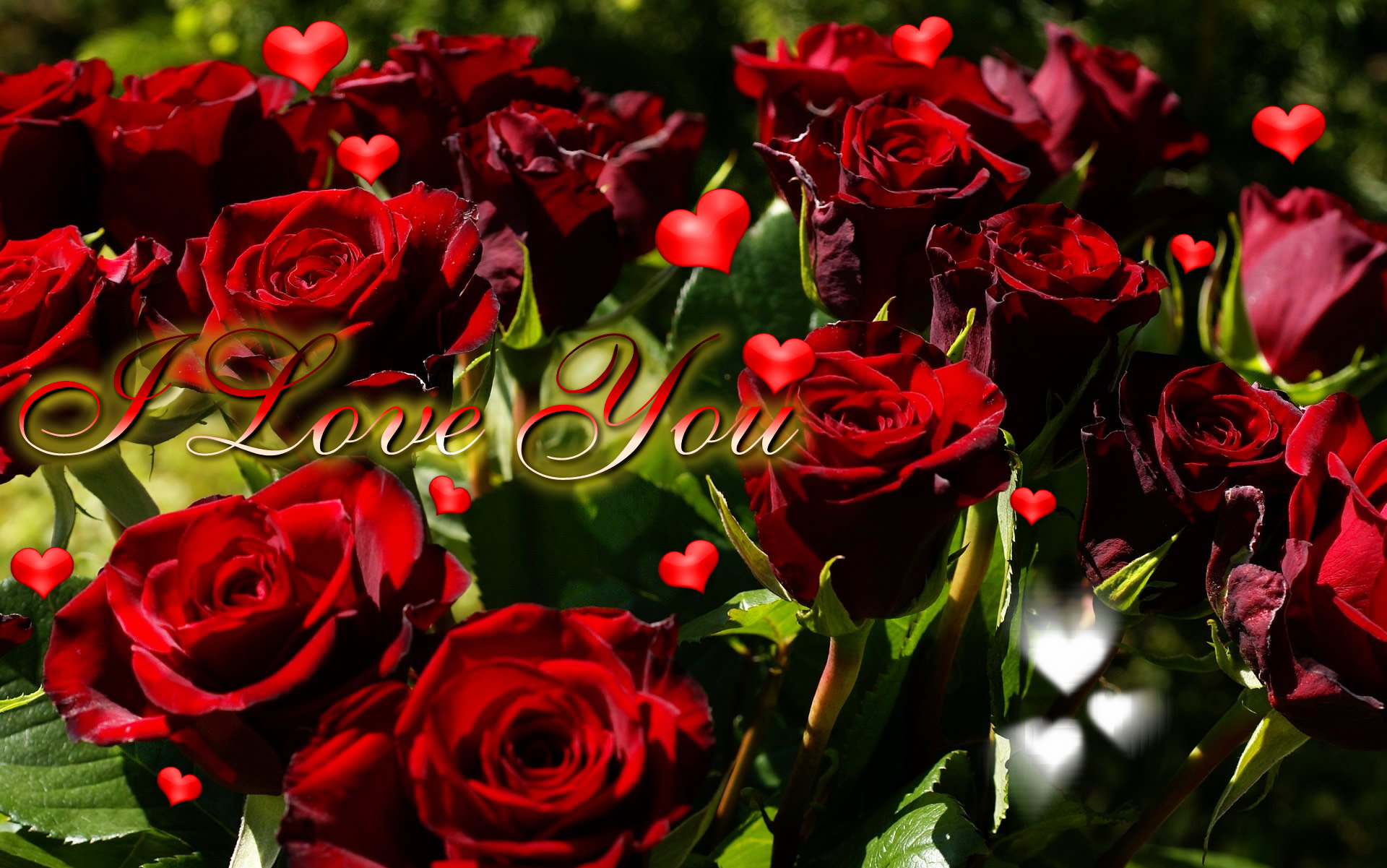 Desktop Wallpaper I Love You : Top 10 Flower I Love You Wallpaper