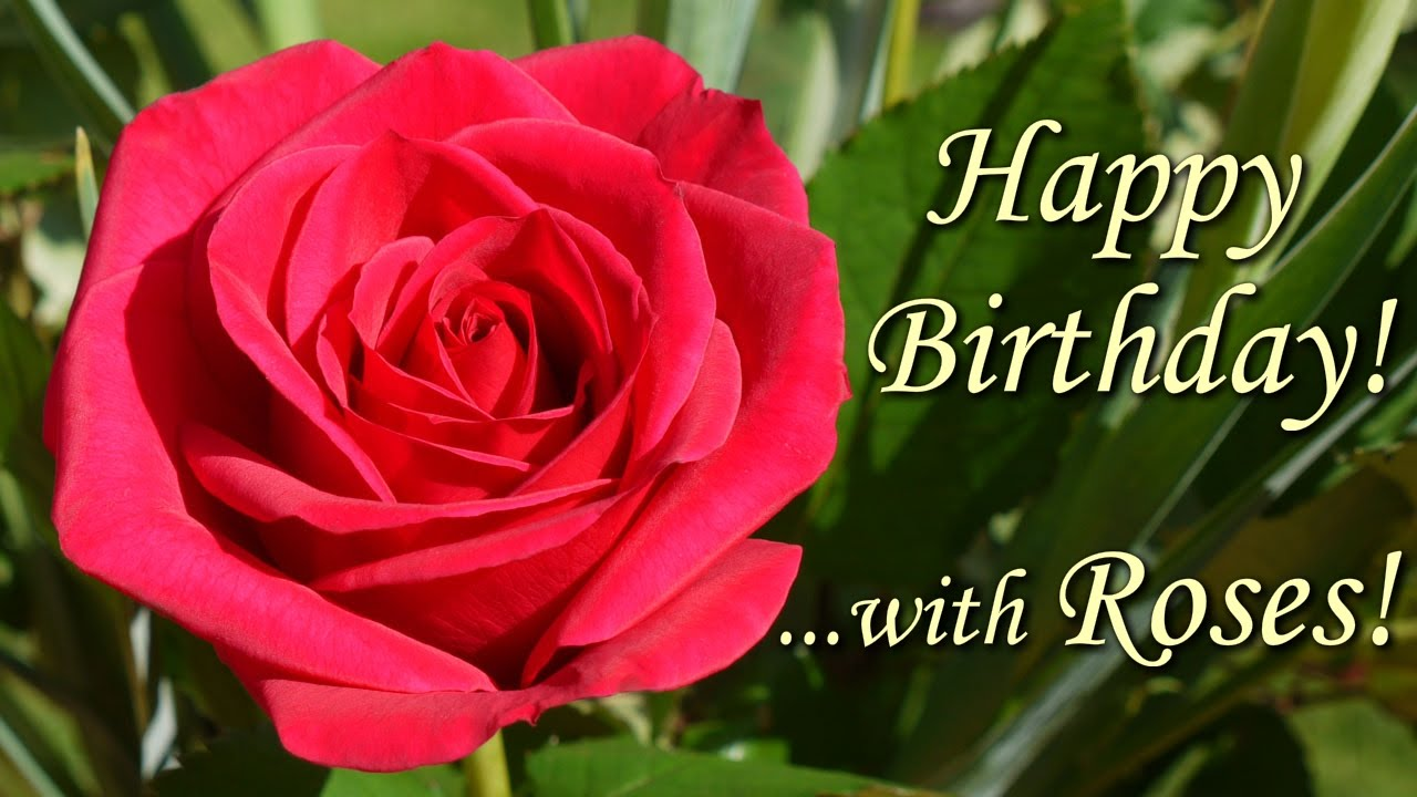 Beautiful flower pictures for birthday birthday flowers cards free birthday flowers ecards izmirmasajfo Image collections