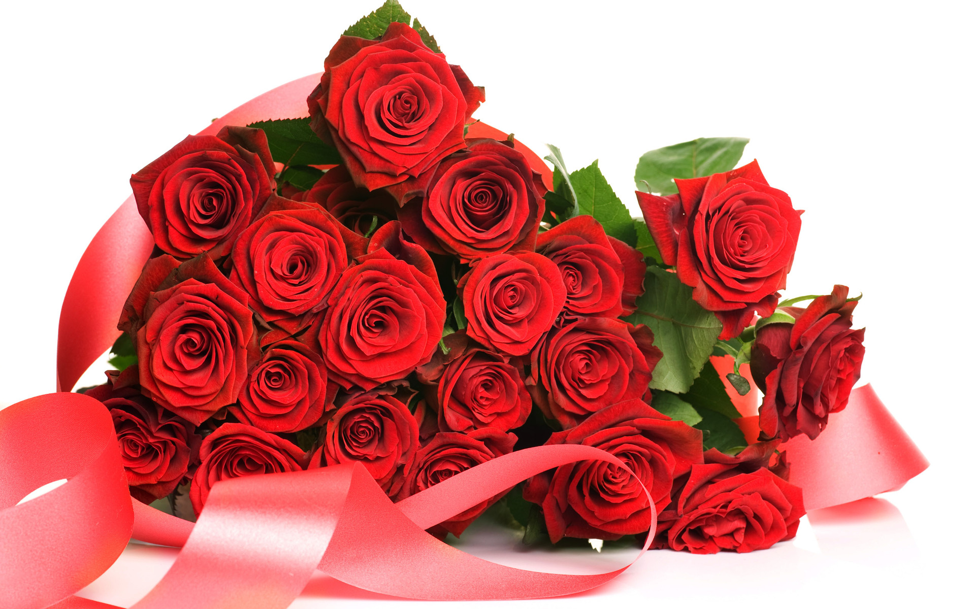 Top 10 Beautiful Rose Flowers Picture