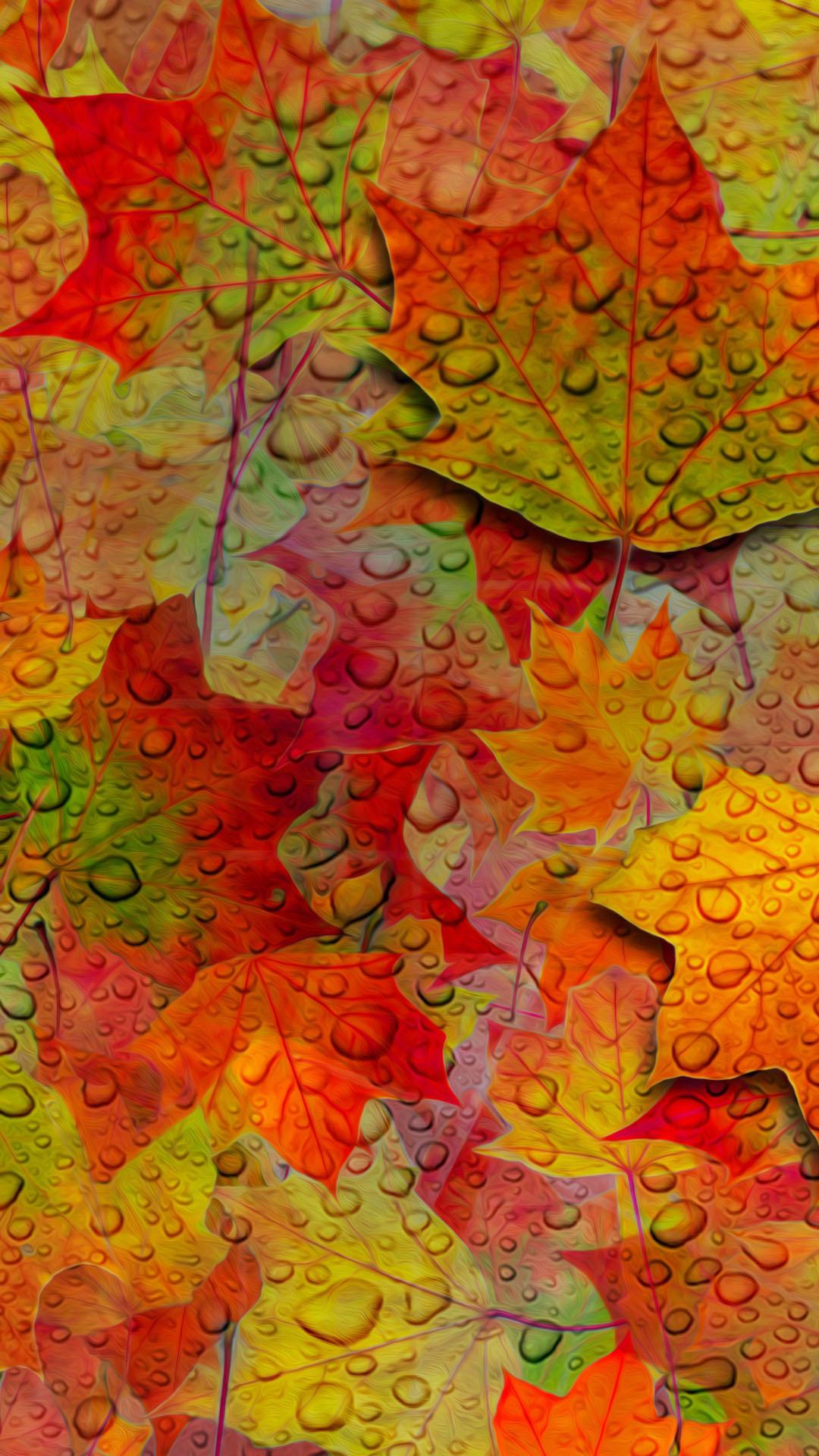 петербурга, картинки осень на айфон полоса