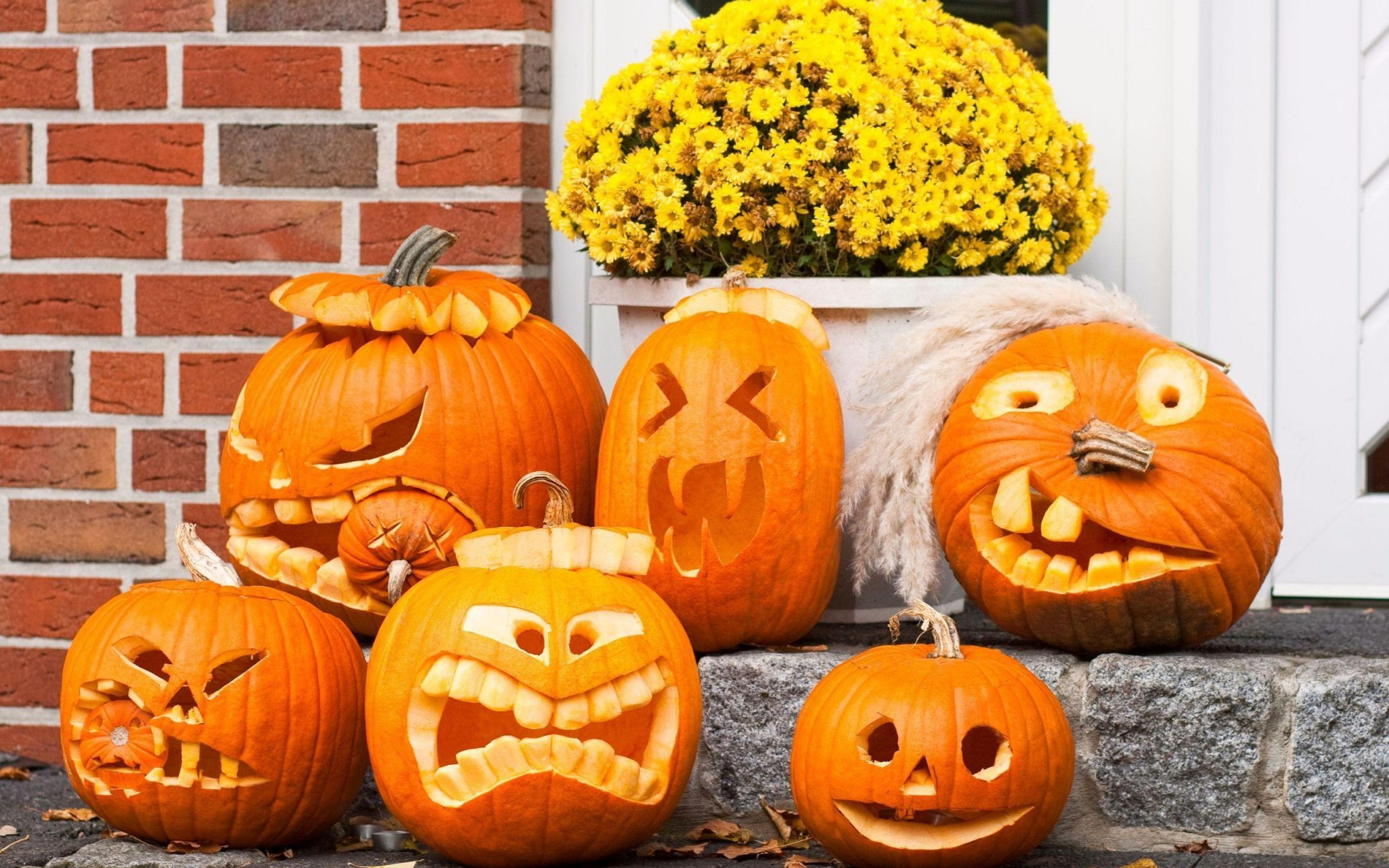 Funny Halloween Background HD Free Download